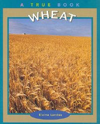 Wheat A True Book