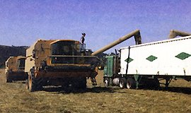 Combine and Truck