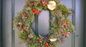 Wreath, Christmas, Tree, Branches, Holiday